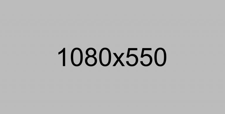 _0002_Calque-4